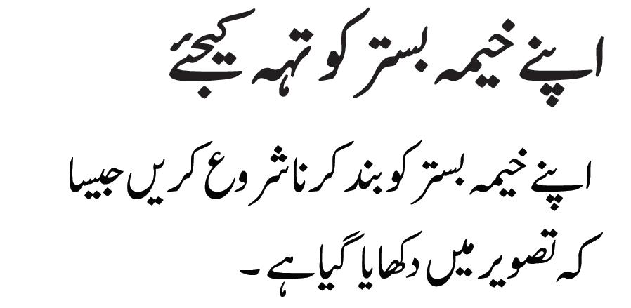 Issue meaning in urdu